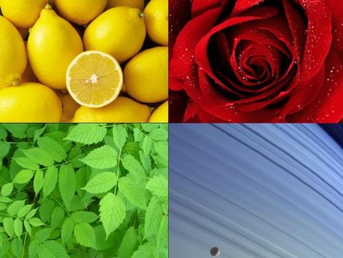 header-colori2.jpg