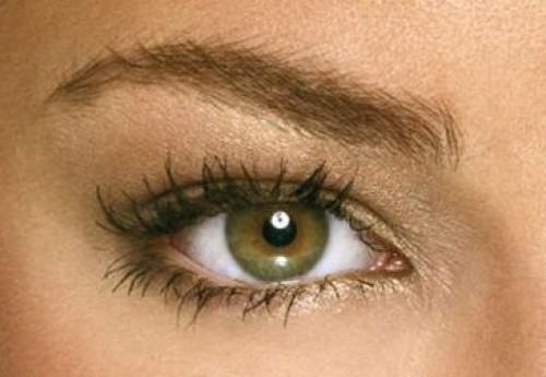 a1sx2_Thumbnail1_eyes5.jpg