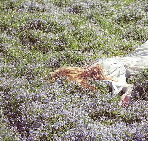 blu-tende-viola10.jpg