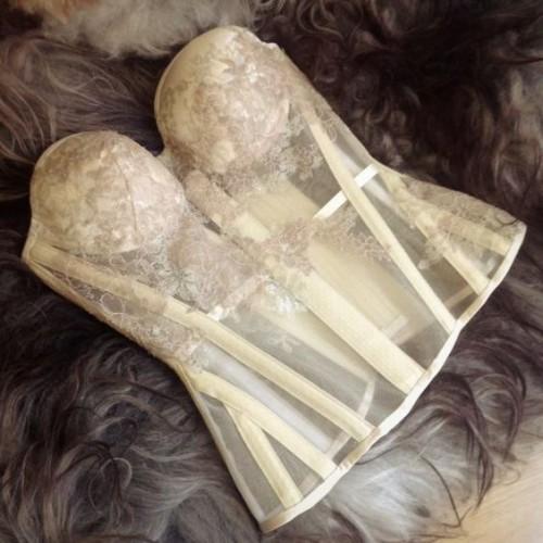 a1sx2_Thumbnail1_corset-training2.jpg
